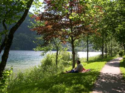 Wanderweg um See